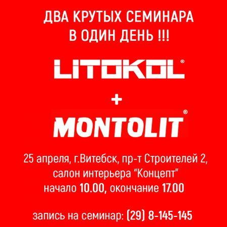 Семинар по Litokol, Montolit и Laminam.